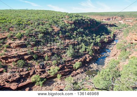 Murchison River Gorge surrounded by vegetated sandstone bluffs in the scenic Z-bend landscape under a clear blue sky in Kalbarri National Park in Western Australia.