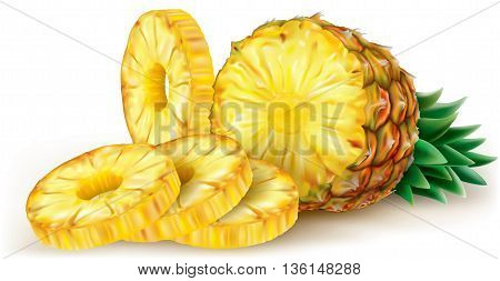 Cut pineapple and round slices. Vector illustration