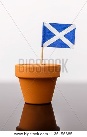 Plant Pot With Scottish Flag
