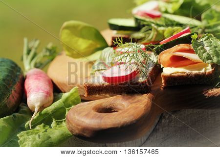 Sandwiches with various fillings. Sandwich with ham, sandwich with cucumber, cheese sandwich with radish on cutting board.