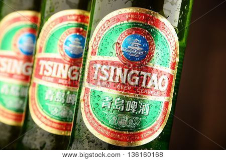 POZNAN POLAND - JUNE 22 2016: Tsingtao beer product of Tsingtao Brewery China's second largest brewery located in Qingdao in Shandong province