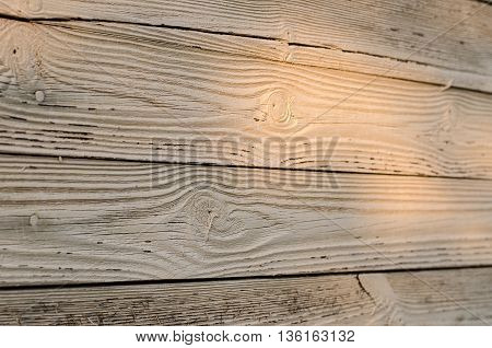 Wooden Texture Topic: Old Wooden Boards Painted White