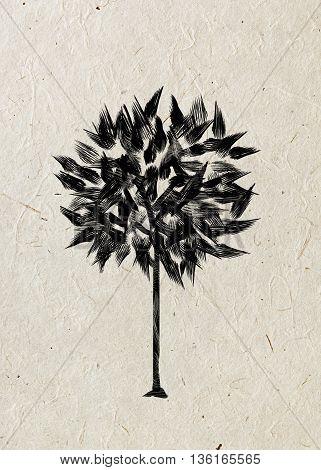 Drawing foliar tree on a beige rice paper. Black silhouette on a beige rice paper. Graphic arts.