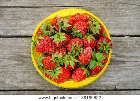 Summer Berries Topic: Ripe Red Strawberries Lying In A Yellow Plate On A Pile Of Gray Wooden Table I