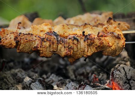 The skewers on the grill. Cooking kebabs on the nature. Hot coal and a delicious barbecue.