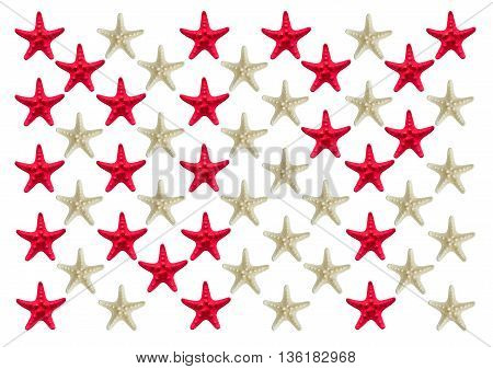 NY logo. new york logo inlaid starfish