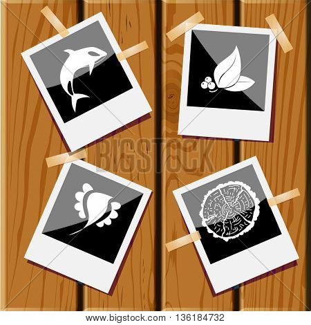4 images: cut of tree, leaf with berries, bird, killer whale. Nature set. Photo frames on wooden desk. Vector icons.