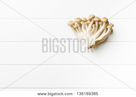 Brown shimeji mushrooms. Healthy superfood on white table.