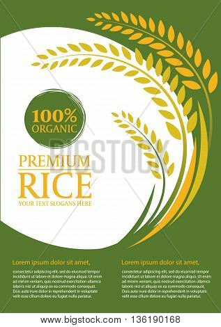 Paddy rice and green background - Layout template size A4 Vector design