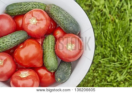 Fresh tomatoes and cucumbers in a bowl