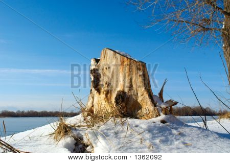 A Stump Covered With Snow
