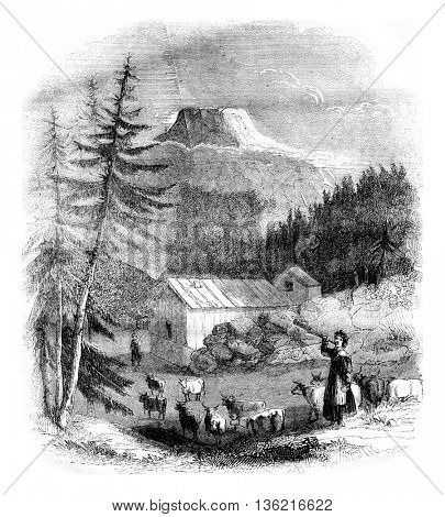 View of the mountain Gousta in Westford dalen valley in Norway, vintage engraved illustration. Magasin Pittoresque 1836.