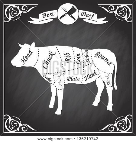 Beef cuts for butcher's shop isolated on a white background. Vector illustration.
