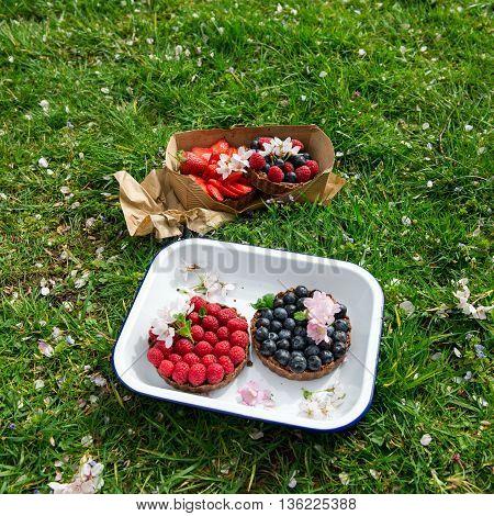 Homemade Chocolate Tarts With Berries