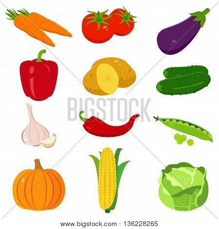 Set of colorful cartoon vegetables icons isolated on white. Vector illustration