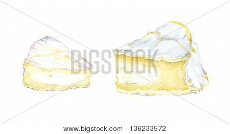 Two french cheese brie slices. Water color isolated