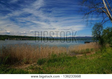 Mediterranean landscape: lake waterside covered by a band of reeds and a band of white snow covered mountains towering above the lake. The hills are densely forested and spotted with houses. Lago Maggiore, Lombardy, Italy.