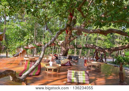 coffee shop in jungle forest in Thailand