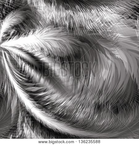 Black and white Feathers Seamless Pattern, Vector Illustration