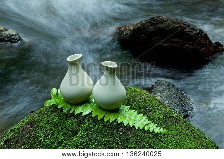 Alternative Skin Care Homemade Lotion On Stone, Green Leaf With Tropical Waterfall In The Background