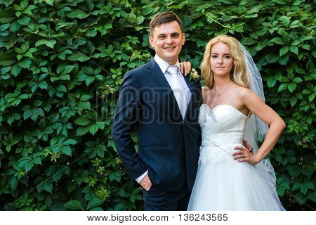 The Bride And Groom Posing On The Background Of Shrubs