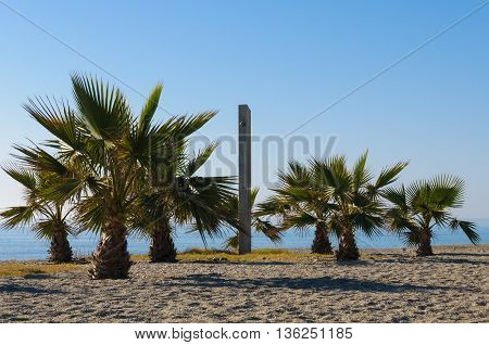 Six palm trees with a shower in the middle on a wondrful beach at the Mediterranean Sea in Spain. The sky is blue with no clouds and beautiful weather.