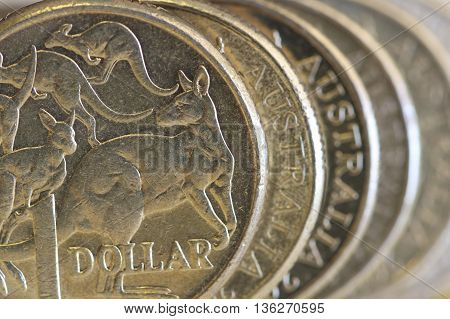 Kangaroos on an Australian one dollar coin.