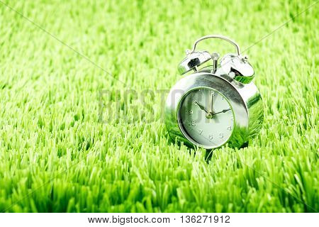 close up Silver alarm clock on green grass.