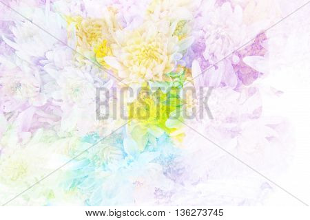 Abstract watercolor illustration of blossom chrysanthemum. Watercolor painting. Floral watercolor illustration.
