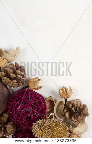 Potpourri of dried plants and decoration on white background