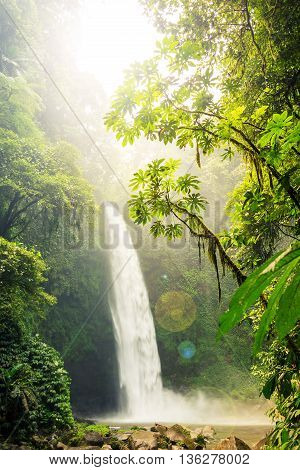 A waterfall plumits into a deep gorge of a tropical rainforest and flows downstram with lush green vegetation surrounding.