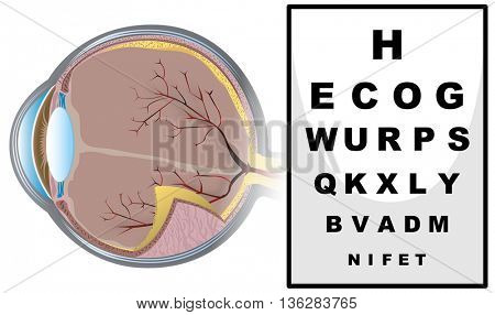 Eye checking with reading board illustration