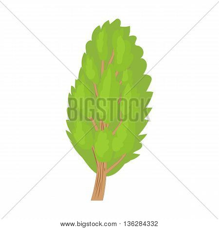 Poplar tree icon in cartoon style on a white background