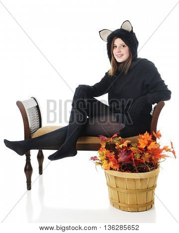 A pretty young teen happily sitting while dressed as a black cat.  She sits behind a basket full of foll foliage.  Isolated on white.