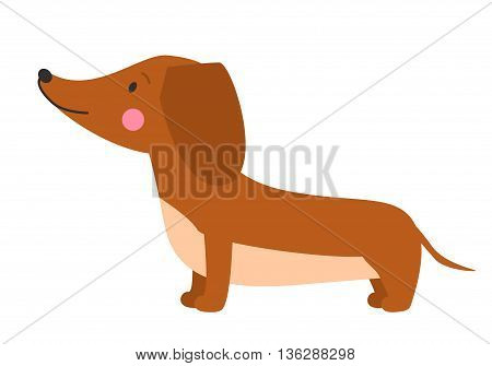 Vector illustration of cute dog dachshund. Nice puppy for greeting card pet shop or veterinary clinics. Dog dachshund standing in profile