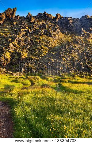 The geothermal wellspring smokes among  grass. Summer trip to Iceland. The green lawn in the Valley National Park Landmannalaugar