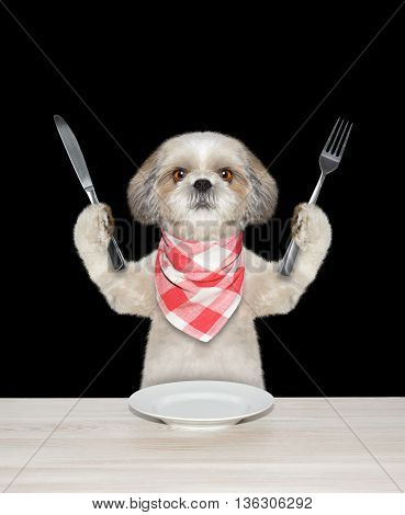 dog finished to eat and hold knife and fork -- isolated on black