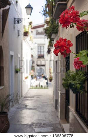 Narrow old town street of Badajoz with flowers and terrace at the bottom decorated as Al-andalus style
