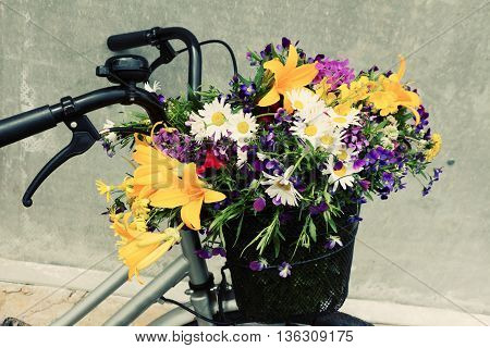 Bicycle basket full of beautiful field flowers lily violets chamomiles. Vintage toning