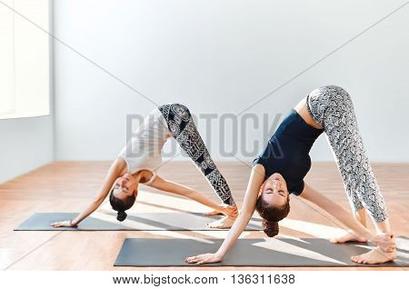 Two Young Women Doing Yoga Asana Revolved Downward Facing Dog