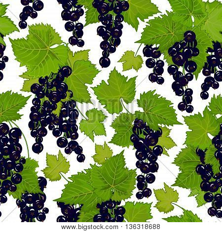 Black currant seamless pattern. Collection of berries. Vector illustration of berries isolation on white for design menus, recipes and packages product.