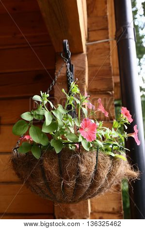 wicker nest hung flower basket close up photo on country summer house porch background