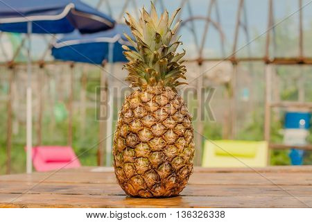 pineapple tropical healthy and fresh fruit agriculture