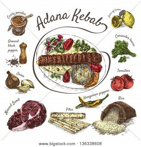 Vector illustration of adana kebab ingredients. Hand drawn colorful illustration on white background