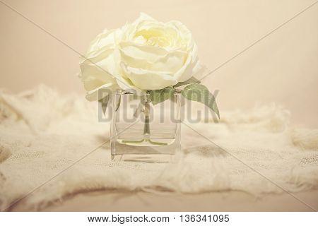 White flower in vase with burlap underneath