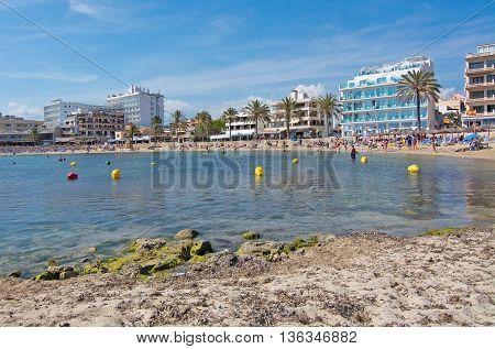Small Marina Boats Moored