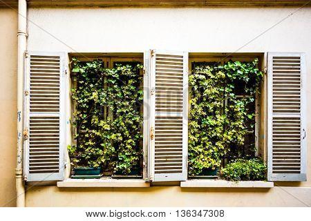 European tradition vintage wooden windows