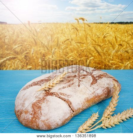 Freshly baked traditional bread with golden wheat field on background. Organic pastries. Beautiful scenery and fresh bread.