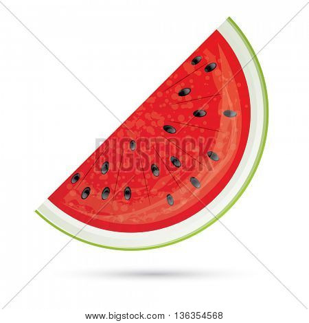 Watermelon slice. Watermelon Icon Isolated on White. Vector Illustration. Red Watermelon with Shadow.