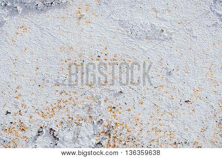 Grunge Dirty Plaster Wall
